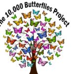 10,000-butterflies-project-hope-beauty-transformation