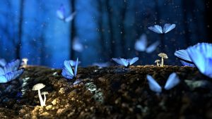 10000-butterflies-project-hope-transformation
